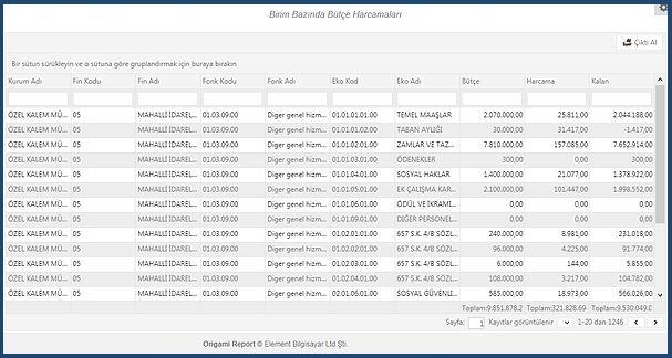 Birim bazında bütçe harcamaları grafik rapor