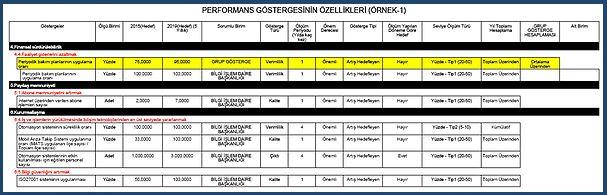 Performans göstergesinin özellikleri