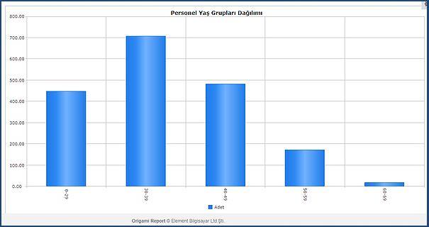personel yaş grupları grafik rapor
